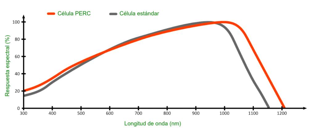 Comparación de la respuesta espectral de la célula PERC y la célula estándar