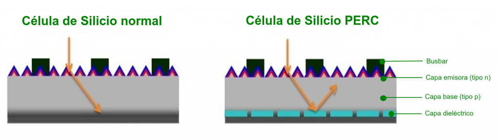 Capas de la célula de silicio normal y la célula de silicio PERC